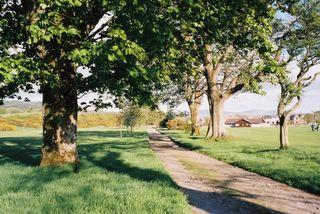 Path across the Golf Course, Newton Stewart