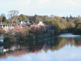 Looking up the River Cree from the bridge, Newton Stewart