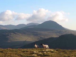 The High Fells from Dale Head