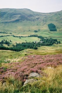 Glen Clova in August, looking towards the hotel from the path up to Loch Brandy