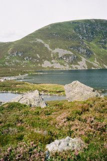 Loch Brandy in August